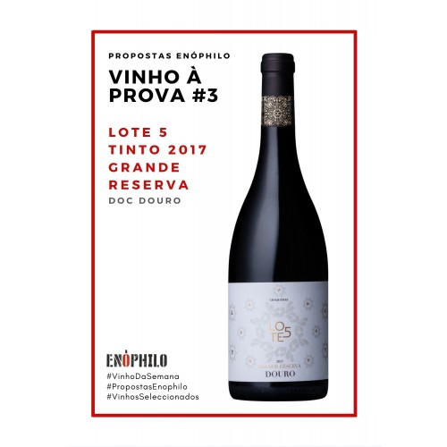 Lote 5 tinto 2017 Grande Reserva (Pack 3 Gfs)