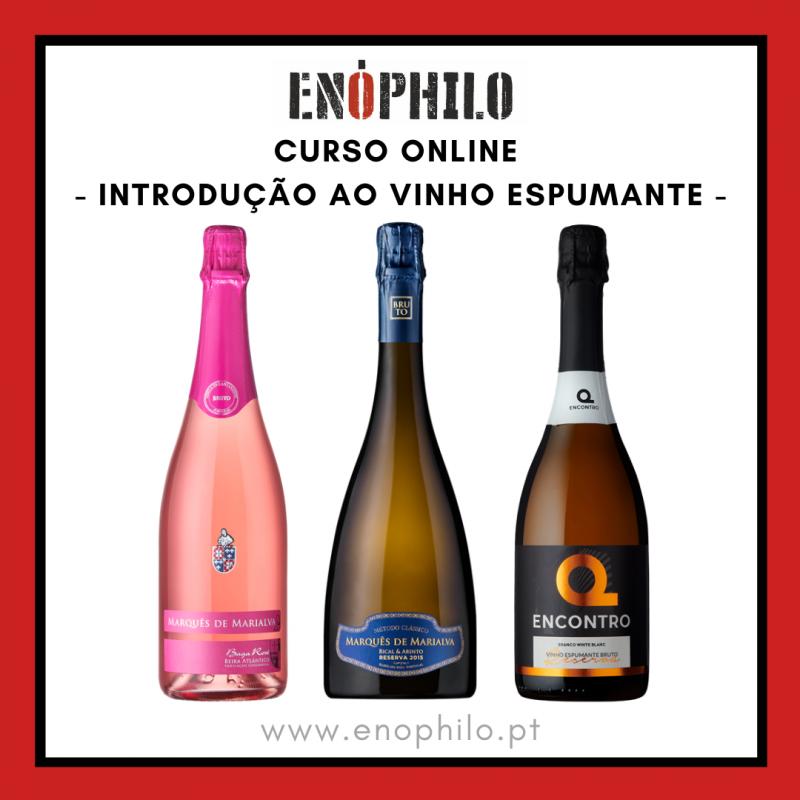 Curso Online (Vinhos Incluídos) - Introdução ao Vinho Espumante (8 e 15 de Outubro)